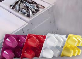 Reciclado de Plásticos: Transforman cajas de pescado en envases de yogur